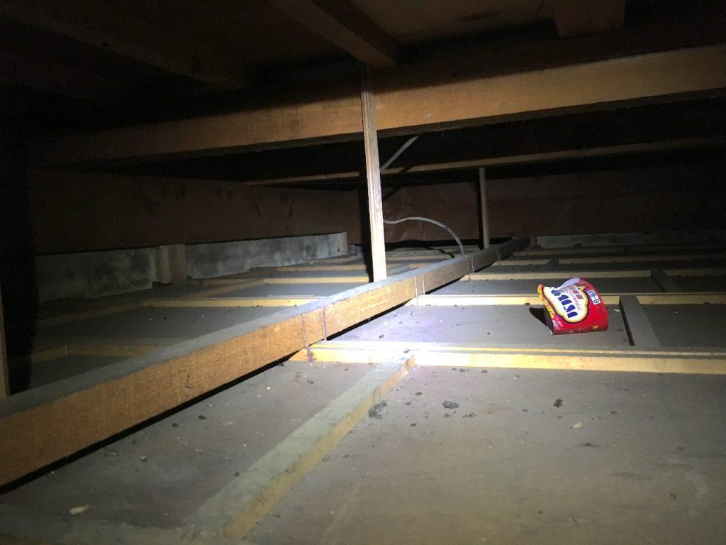 古い家の天井裏はパンドラの匣。