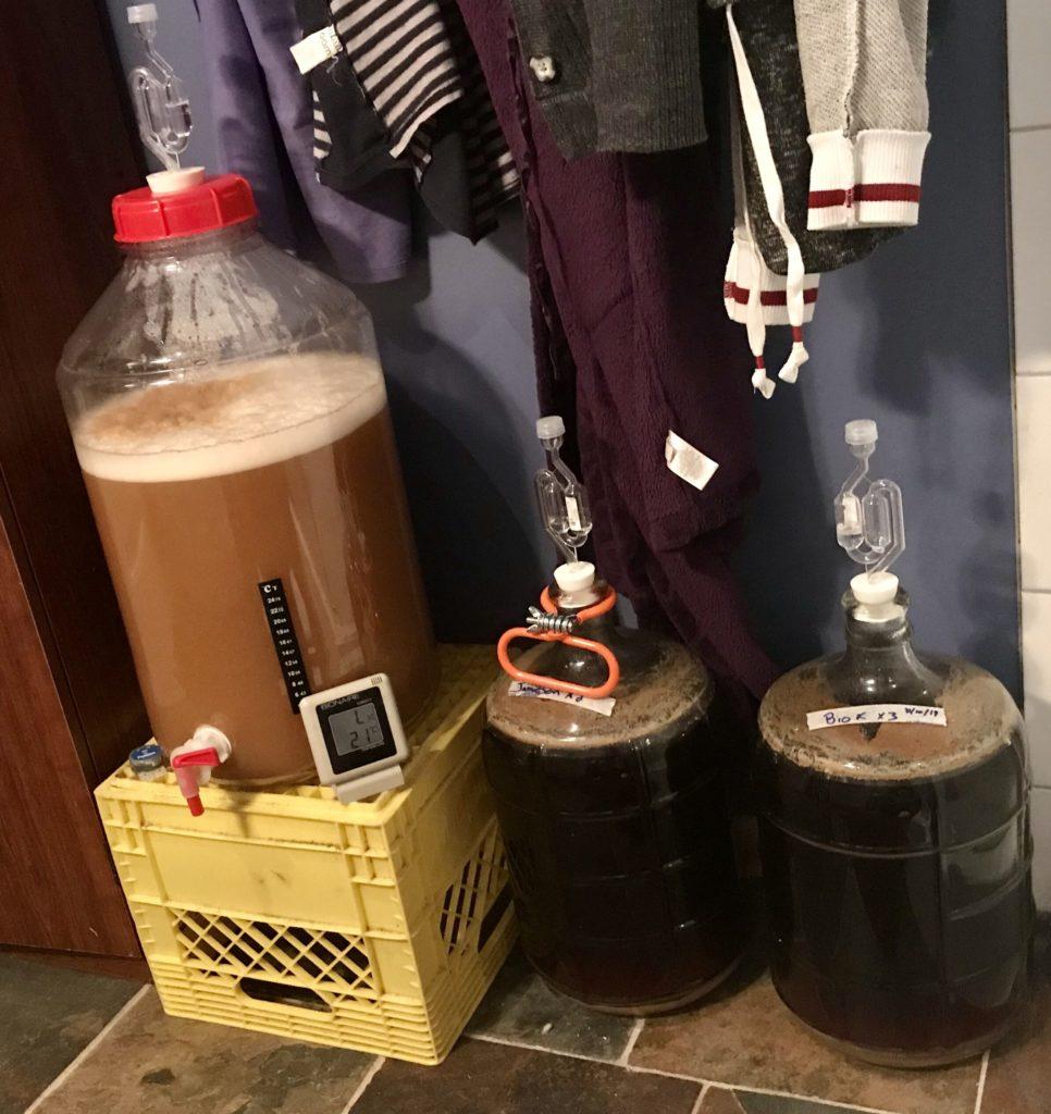 【日本では違法】海外でビールを自家醸造した時の話。